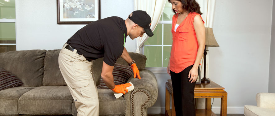 Warminster, PA carpet upholstery cleaning